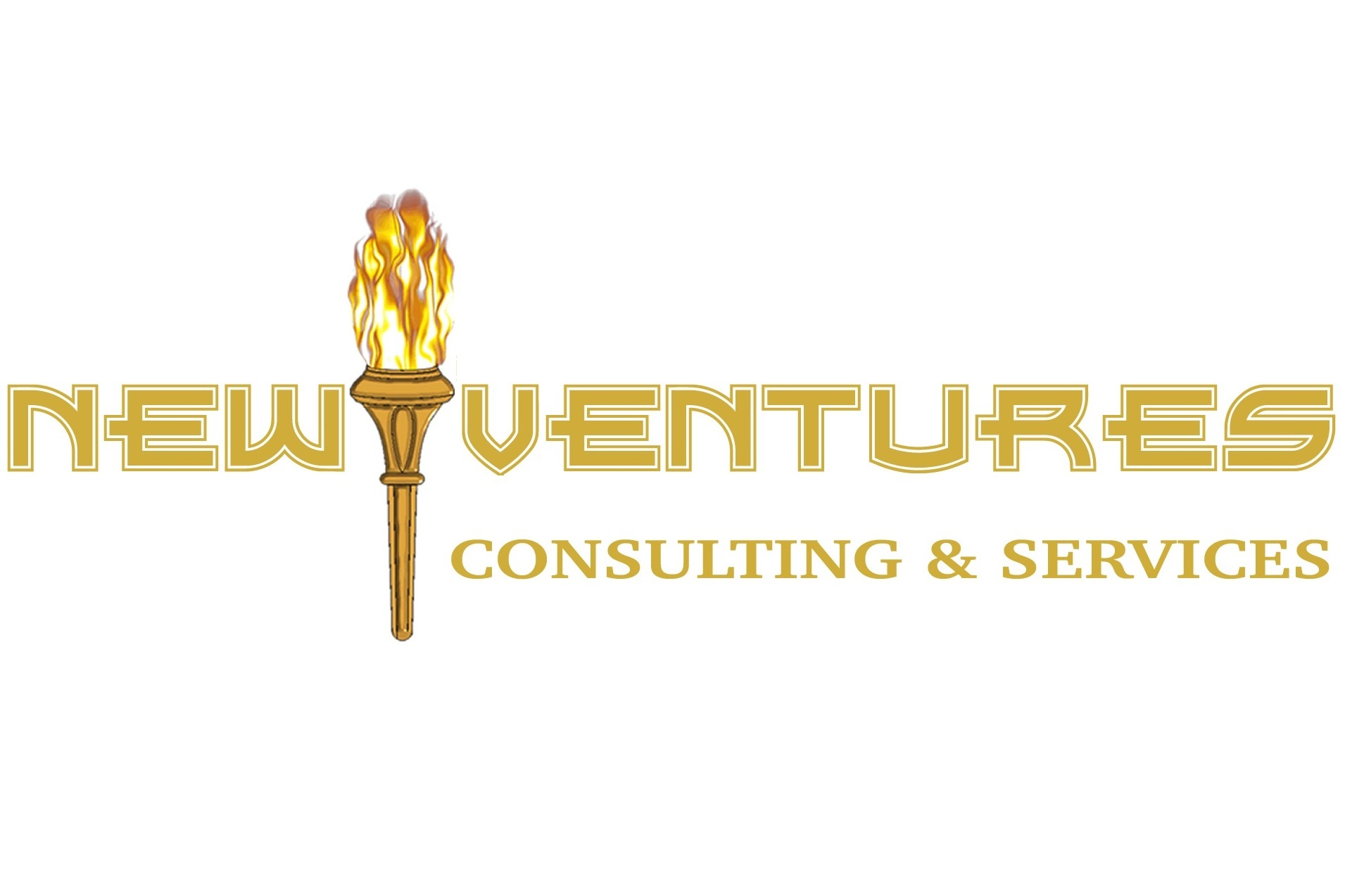 New Ventures Consulting & Services
